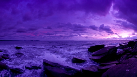 Purple Sunset Sunsets Nature Background Wallpapers On