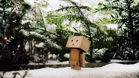 Danbo in snow - tree, snow, box, robot, danbo