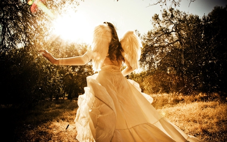 Angel - photography, wings, girl, angel, nature, beautiful, woman