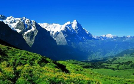 Beautiful mountains - green, grass, view, mountains, beautiful, trees, sky, blue