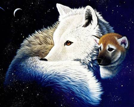 White Wolf Wallpaper Desktop White Wolf Wallpaper Desktop