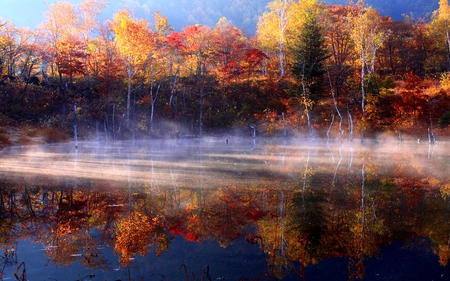 FOGGY AUTUMN - autumn, river, colors, fog, trees