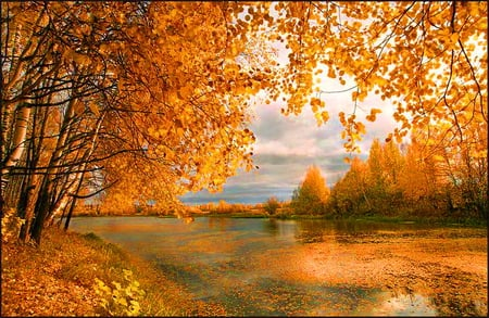 Wrapped in autumn - autumn, reflection, sunshine, orange, lake, gold