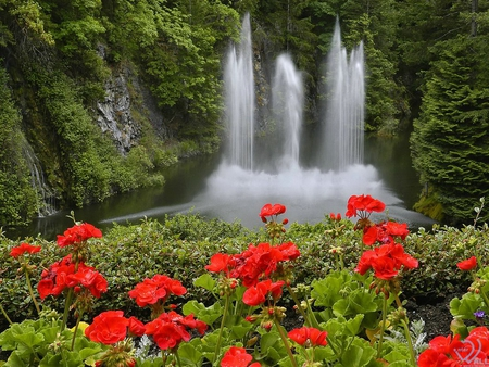 beautiful flower gardens waterfalls keywords and pictures - Beautiful Flower Gardens Waterfalls