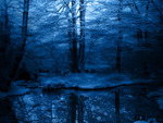Ever Secluded in Blue
