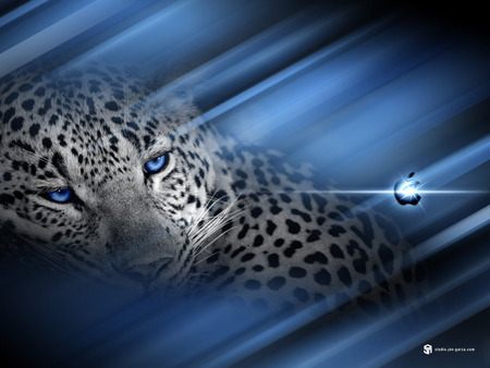 Apple - leopard, logo, cat, blue, apple, cats, lepoard, mac, 3d, background, technology, animals, blue eyes, vista, computers, abstrakt