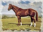 Secretariat - Horse F2