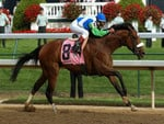 Barbaro Winning the Kentucky Derby 5