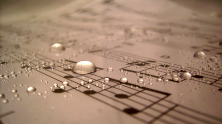 The sound of music - photo, photograph, pic, image, sound, music, notes, stave, dew, drops, wall, picture, photography, wallpaper, paper