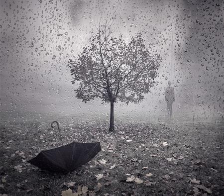 Autumn Rain Photography Abstract Background Wallpapers On Desktop Nexus Image 831627