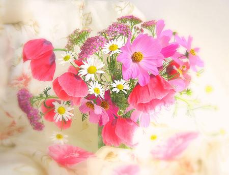 Fresh flowers in vase - flowers, fresh, daisies, pink, still life, camomile, vase