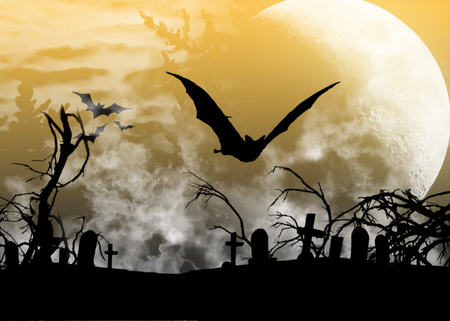 Night Flyer - moon, cemetary, halloween, bat