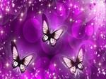 Purple Butterfly Mirage