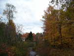 autumn in madison maine