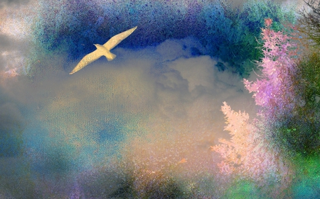 In The Mists Of Time - time, abstract, textures, bird, multicolor, dove, nature, mists, watercolor