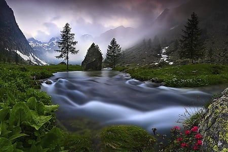 Big mountain river - grass, beautiful, clouds, fog, mountain, green, stone, color, waterstream, flowers, colors, creek, alps, sky, trees, mist, water, purple, nature, ricer