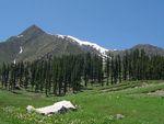 Gilgit-Pakistan