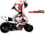 action simoncelli