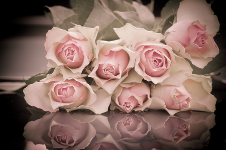 Sunday Roses  - still life, bouquet, sunday, reflection, pink roses
