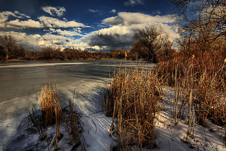 Frozen - silence, sky, clouds, lake, winter, vegetation, beauty, nature, hdr, white, frozen