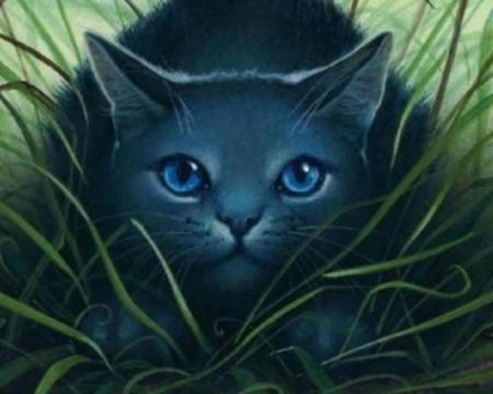 Warrior cats - warrior cats, warrior, cats, lunarmist