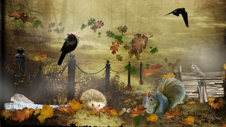 Autumn Mist Among Friends - fence, fall, autumn, squirrel, crows, possum, woods, firefox persona, mist, log, nuts, leaves, boards, wood