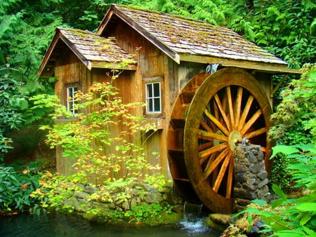 Water mill - peaceful, stream, creek, forest, calm, water, summer, water mill, old, nature, hidden, trees, beautiful, greenery, wood, river, green, mill