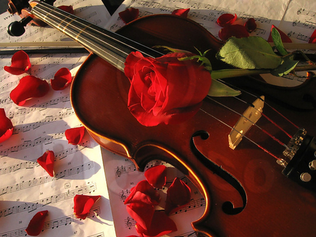Sweet Melody Photography Abstract Background Wallpapers On