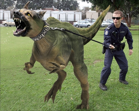 Monster Dog Funny Amp Entertainment Background Wallpapers