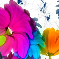 Music Flowers Damaged Background