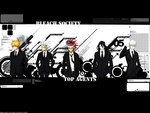 Bleach Agents