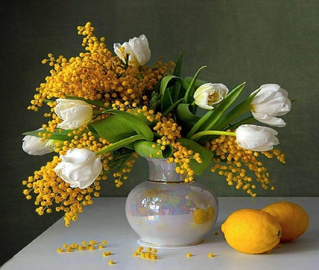 Spring is coming! Spring - the road! - fruit, flower, spring, wattle, tulip, lemon