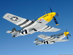 P51 Formation