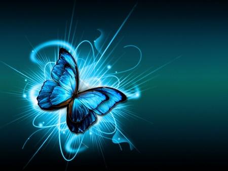 Blue Butterfly Butterflies Animals Background Wallpapers