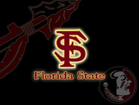 Florida State Seminoles - fsu, state, florida state university, florida state, florida, football, seminoles