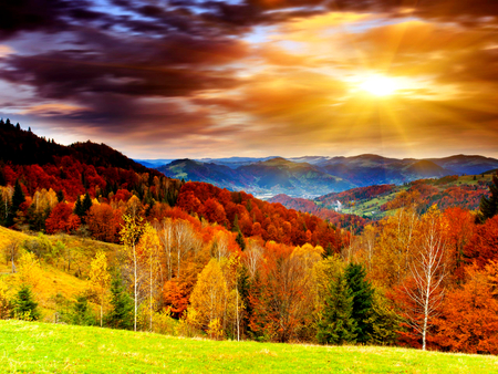 Autumn Colors - colorful, autumn, sun, woods, autumn leaves, beautiful, sunset, clouds, leaves, splendor, autumn splendor, beauty, light, forest, lovely, view, sunlight, colors, sky, trees, tree, sunrays, rays, mountains, autumn colors, peaceful, nature, landscape
