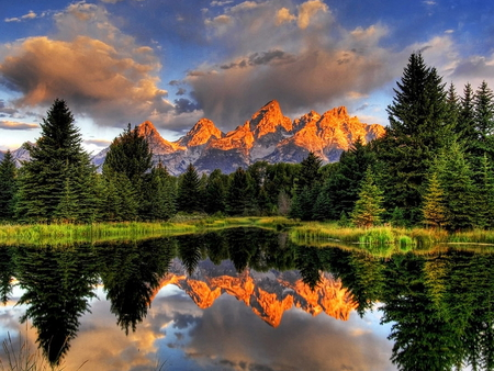 Reflected landscape - trees, sky, clouds, lake, mountains, plants, pinetrees, reflected, landscape