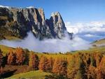 Misty Autumn Valley