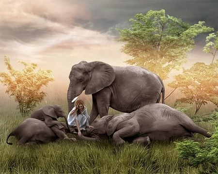 My Elephants Family - tree, elephants, grass, elephant, sad, abstract, woman, field