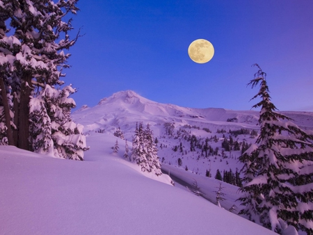 Full Moon at Dawn - dawn, lovely, snow, full moon, mountains, morning, trees