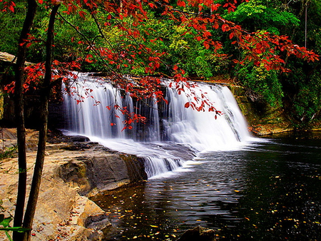 Forest waterfall - red, forest, fall, leaves, waterfall, colors, nature