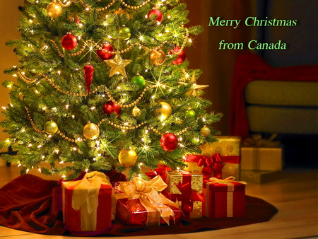 Merry Christmas - christmas, gifts, lights, canada, tree, greeting