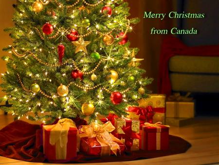 Merry Christmas - christmas, gifts, lights, canada, tree, greeting