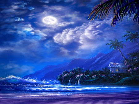 TROPICAL NIGHT - Sky & Nature Background Wallpapers on ...