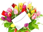Colorful tulips and love letter