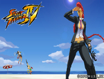 Street Fighter IV: Crimson Viper