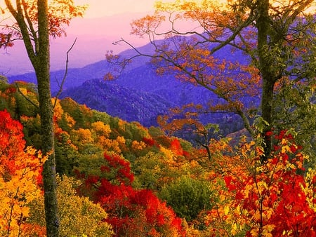 Autumn view - view, colors, colorful, nature, mountain, autumn