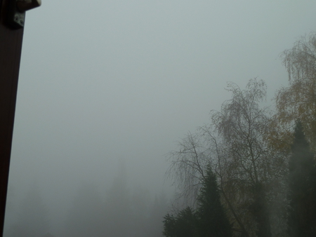 Foggy Weather In The Netherlands