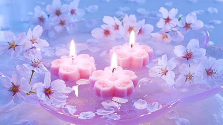 Lovely pink candles photography abstract background wallpapers lovely pink candles pink lovely light candles flowers beautiful mightylinksfo