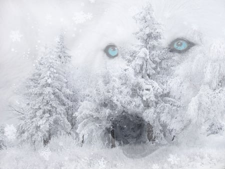 Spirit Of Wolf - spirit, fantasy, snow, wolf, eyes, abstract, blue, winter